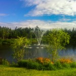 ponds and property value